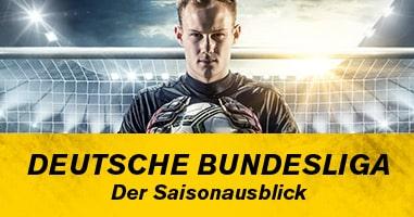 Die Deutsche Bundesliga 2020/21